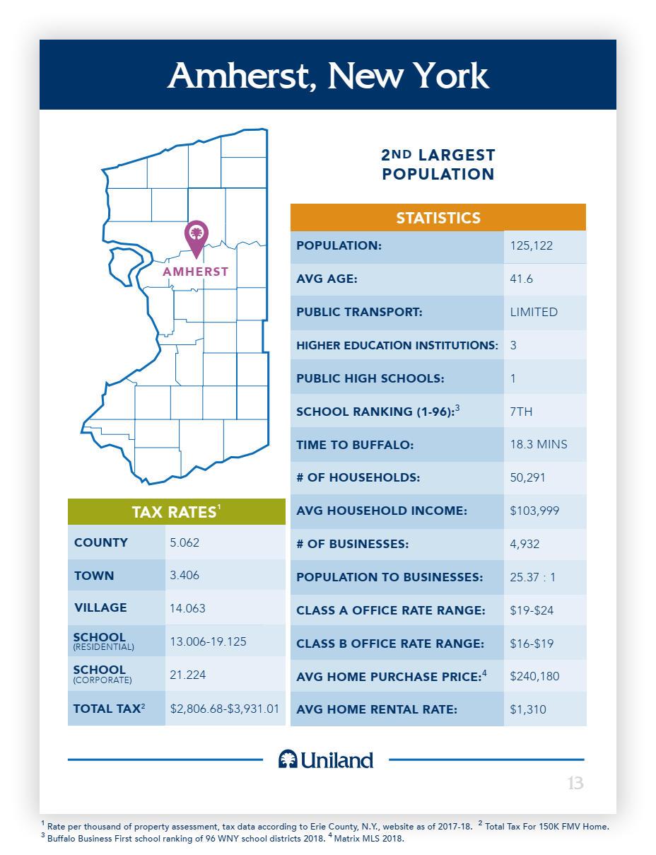 Amherst, NY Business Data