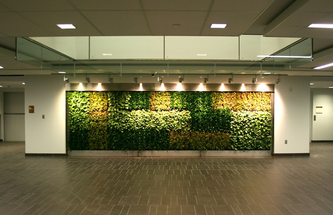 living wall canisius